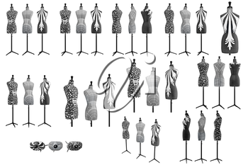Set female mannequins with patterns, collection. 3D graphic