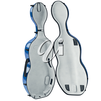 Case cello plastic with textile velvet filling, open view. 3D graphic