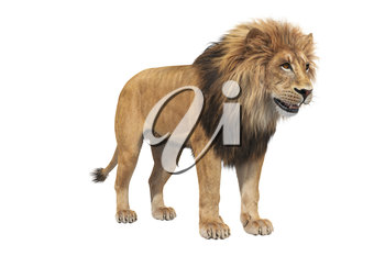 Lion with big mane, isolated on white. 3D rendering