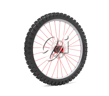Wheel for modern bicycle isolated on white